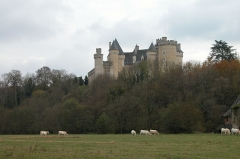 Château du Chabenet - Français:   Château de Chabenet (Indre)
