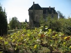 Château - Français:   vue depuis le jardins on y voit le logis et la tours carré