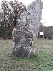 Menhir dit Pierre Percée ou des Arabes - Français:   La Pierre-percée, vue du Nord-Est. Draché, Indre-et-Loire, France