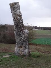 Menhir dit Pierre Percée ou des Arabes - Français:   Menhir de Draché, vue du nord-est. Touraine, France