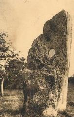 Menhir dit Pierre Percée ou des Arabes - Français:   Menhir dit de la Pierre Percée, à Sainte-Maure-de-Touraine