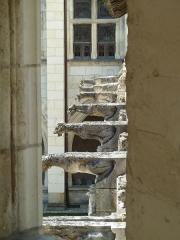 Cloître Saint-Gatien dit La Psalette - Cloître de la Psalette (XVe et XVIe siècles). Galerie nord. Gargouilles.