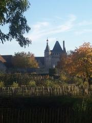 Domaine du château de Talcy - Français:   Chateau de Talcy en automne