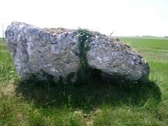 Dolmens de la Nivardière - Dolmen du Bourg Neuf, à Tripleville (Loir-et-Cher, France)