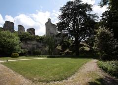Ruines du château - Deutsch: Burg Vendôme in der Kleinstadt Vendôme im Département Loir-et-Cher/Frankreich - Parkanlage auf dem Gelände der Burg.