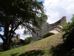Ruines du château - Deutsch: Burg Vendôme in der Kleinstadt Vendôme im Département Loir-et-Cher/Frankreich - Teile der Burgruine Vendôme