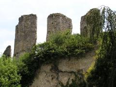 Ruines du château - English: Ruins of the castle at Vendôme