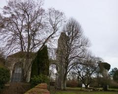 Ruines de l'abbaye de Fontainejean (ou Fontaine-Jean) - English: Saint-Maurice-sur-Aveyron, Loiret, région Centre, France. In Fontainejean: the abbey ruins.