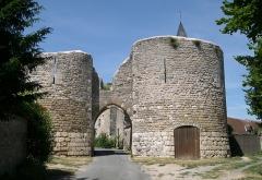 Château d'Yèvre-le-Châtel -  France Loiret Yèvre-le-Châtel Le château  Photographie prise par GIRAUD Patrick