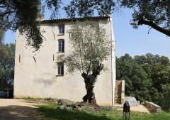 Maison des Milelli - Français:   Ajaccio, maison des Milelli