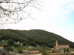 Couvent Saint-François - English: St-François convent - Ste Lucie de Tallano