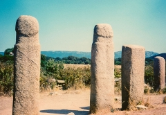 Alignements de statues-menhirs dénommés Rinaiu et I Stantare - English: Stantari megalithic site near Sartene, Corsica, 1998