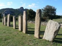 Alignements de statues-menhirs dénommés Rinaiu et I Stantare - English: Stone row in Stantari, Cauria, Sartène, Corse-du-Sud