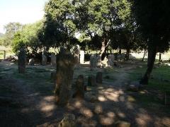 Alignements de statues-menhirs dénommés Rinaiu et I Stantare - English: Stone row in Rinaghju, Cauria, Sartène, Corse-du-Sud