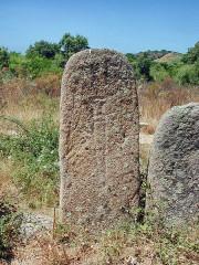 Alignement de menhirs de Pagliajo - English: Corsica, Palaghju, armoured menhir