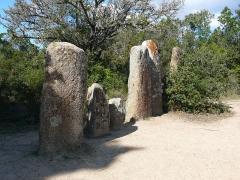 Alignement de menhirs de Pagliajo - English: Stone Rows in Palaghju, Sartène