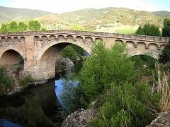 Pont génois sur le Tavignano - Italiano: Ponte genovese sul fiume Tavignano, presso Altiani, Corsica.