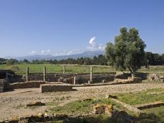 Cité antique de Mariana - English: Roman ruins at Mariana