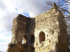 Ruines du château - English: Donjon in Brionne, departement Eure, France, 11th century.