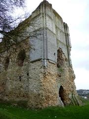 Ruines du château -  The keep of Brionne from the northwestside. Nordwestseite des Donjons von Brionne.