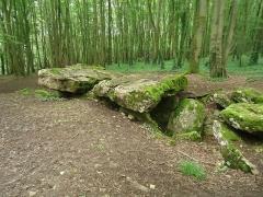 Allée couverte - Français:   Allée couverte de Dampsmesnil dans l\'Eure
