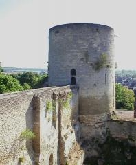 Restes du château -  Chateau de Gisors, France - donjon