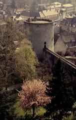 Restes du château -  Eure Gisors Chateau
