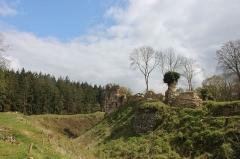 Ruines du château fort - Français:   Château de Montfort-sur-Risle et vue sur la forêt de Montfort