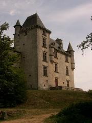 Château de Sedières -  Contre plongée sur le château de Sédières - Corrèze - France