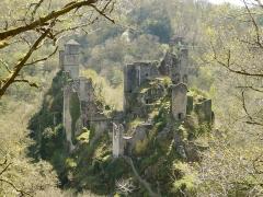 Restes du château de Merle - Tours de Merle