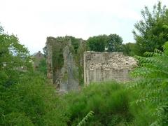 Château de Crozant - English: Crozant castle 15