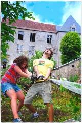 Restes du château - English: Défrichage intensif 2012