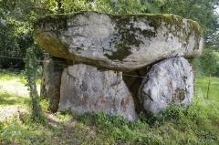 Dolmen de La Borderie - Français:   Dolmen de la Borderie, commune de Berneuil, Haute-Vienne.