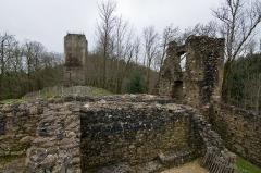Ruines du château Chalusset - Ruines du Bas Castrum du château du Chalucet, Haute-Vienne, France.