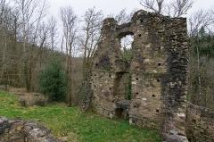 Ruines du château Chalusset - Ruines de la Maison du chevalier au château du Chalucet, Haute-Vienne, France.