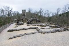 Ruines du château Chalusset - Ruines du Bas Castrum au château du Chalucet, Haute-Vienne, France.