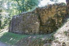 Ruines du château Chalusset -  Bas Castrum du Château de Chalucet / Saint-Jean-Ligoure - Haute-Vienne - France