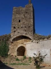 Château d'Airvault -  Tour nord-est du château, vu de l'intérieur