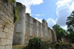 Ruines du château de Mursay - Français:   Le Château de Mursay