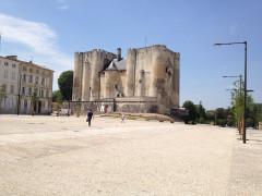 Château de Niort -  Niort