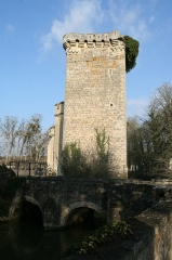 Domaine de Saint-Loup -  Chateau de Saint Loup Lamairé