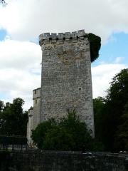 Domaine de Saint-Loup - Français:   Le donjon du vieux château, château de Saint-Loup-sur-Thouet, Saint-Loup-Lamairé, Deux-Sèvres, France
