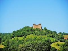 Château (ensemble du) - Français:   Château de Belvoir, vu de Sancey-l\'Eglise.