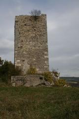 Château (restes) -  Montferrand-le-Château le Donjon