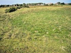 Site du Fort Bachin (également sur commune de La Rivère-Drugeon) - Français:   Esplanade ceinte d\'un muret de terre, au sommet du tertre artificiel nommé fort Bachin. Habitat fortifié très ancien. Bouverans. Doubs