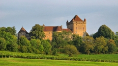 Château du Pin - Français:   Château du Pin (Inscrit Classé)