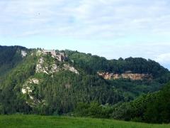 Fort Belin -  Mont Belin, Salins-les-Bains(39)