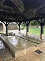 Fontaine du Lavoir - French Wikimedian, software engineer, science writer, sportswriter, correspondent and radio personality