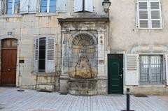 Fontaine du Cheval Marin - Français:   Fontaine du Cheval Marin, Poligny, Jura.