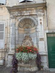 Fontaine du Cheval Marin - Français:   Photographie de la fontaine du Cheval marin (XVIIIe s), sise Grande Rue, à Poligny (Jura).